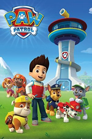 Paw Patrol Birthday Party Ideas And Themed Supplies